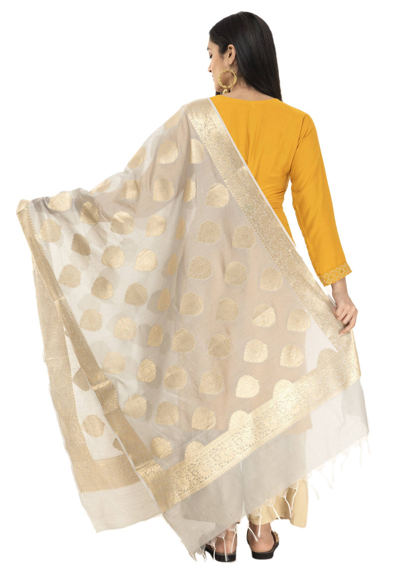 A R Silk Women's Chanderi Cotton Zari Work Light Grey Banarsi Chanderi Dupatta ARS0407