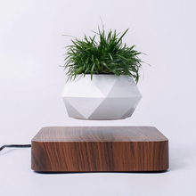 Load image into Gallery viewer, Bonsai Floating Pot