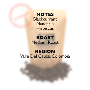 Load image into Gallery viewer, LA OCULTA Coffee Beans Hermanos