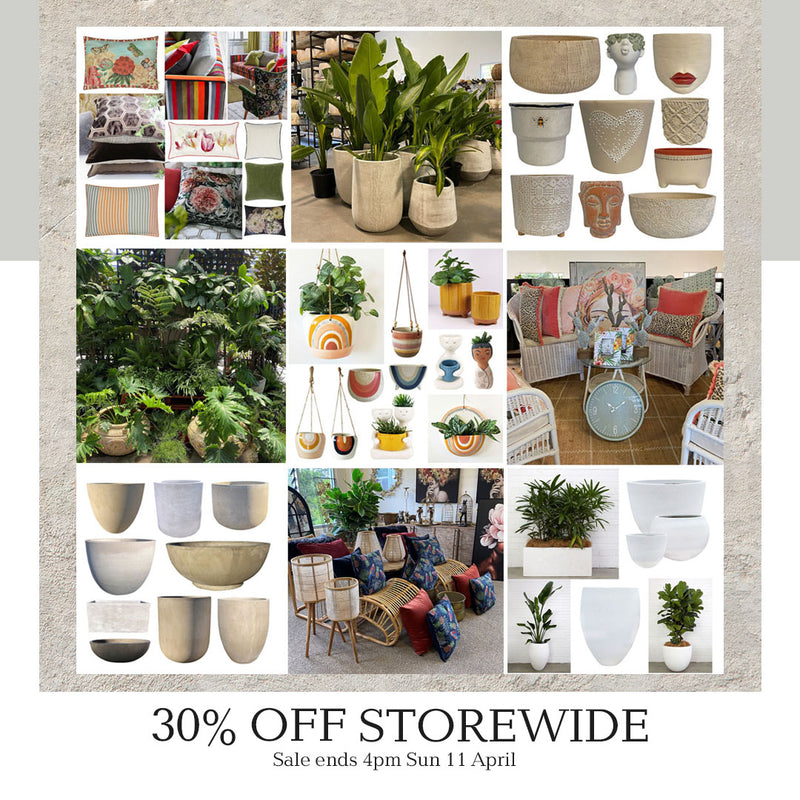 Poppy's 30% off Storewide Easter Sale on Now!