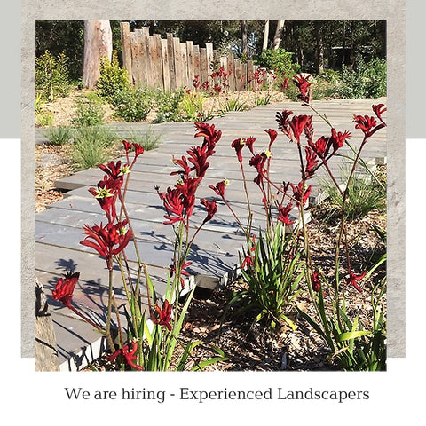 We are hiring Experienced Landscapers at Poppy's Home and Garden