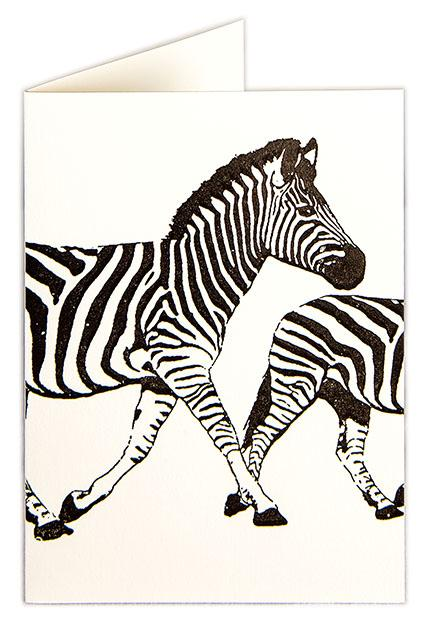 Zebra Blank Note Cards - Pack of Five