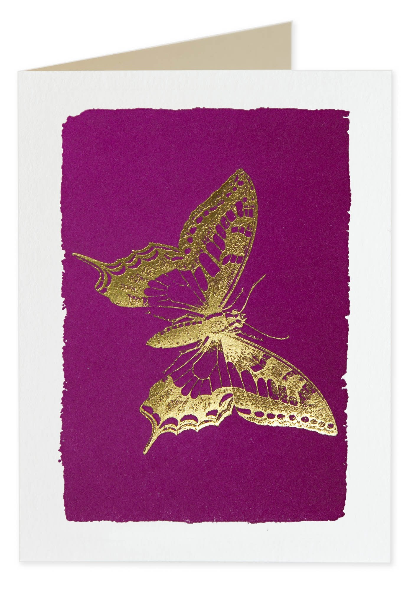 Butterfly Blank Note Cards - Pack of Five