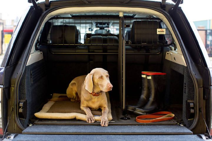 Roll up Travel Dog Bed - Oatmeal