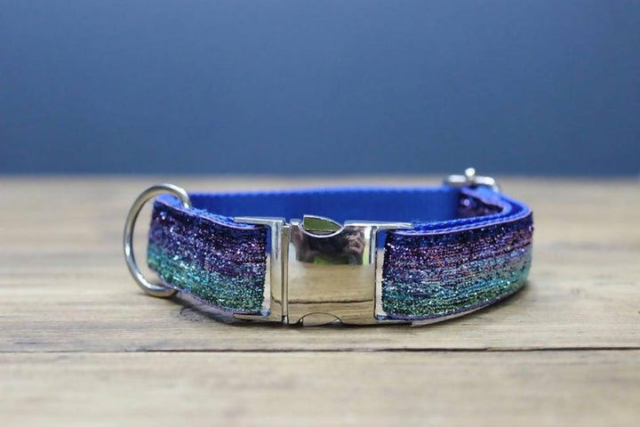 Disco dog collar