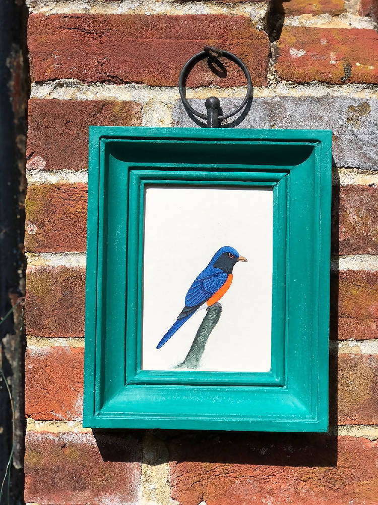 Hand painted bird picture - Blue/orange