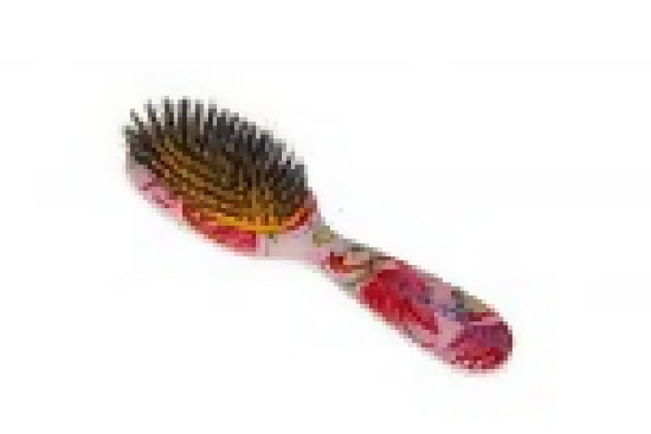 Flamingos Natural Bristle Detangling Hairbrush