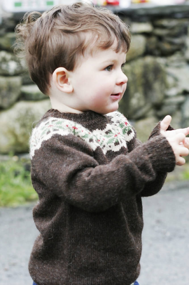 Jumper, Fair Isle Round /Crew Neck in Chocolate Brown