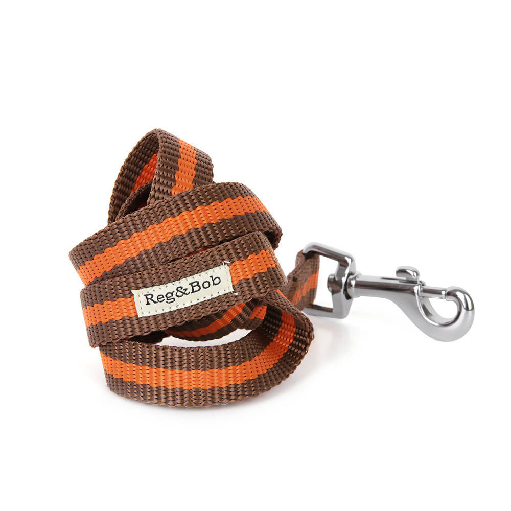 Dog collar and lead set - ORANGE