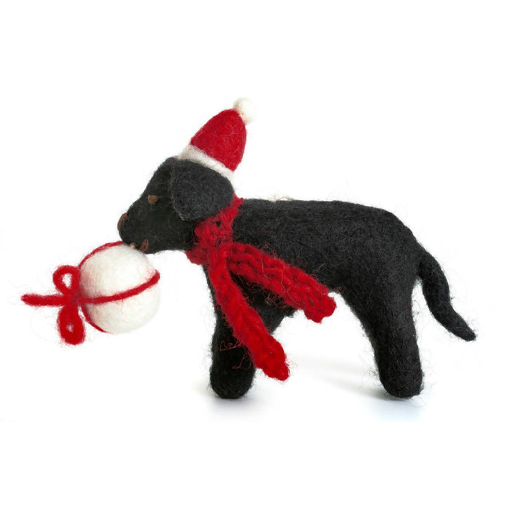 Black Labrador with Present