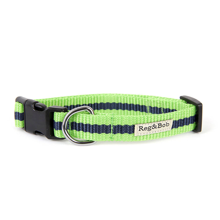 Dog collar and lead set - GREEN