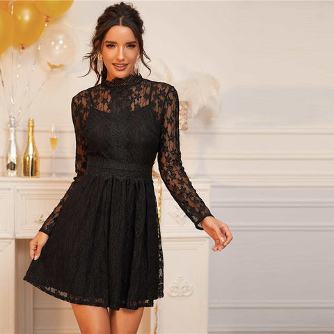 Black Stand Collar Sheer Lace Overlay Dress