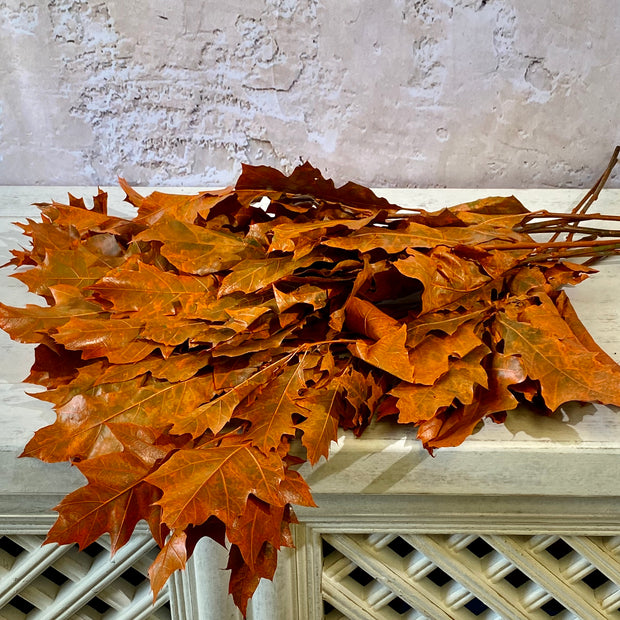 Painted Oak Leaves