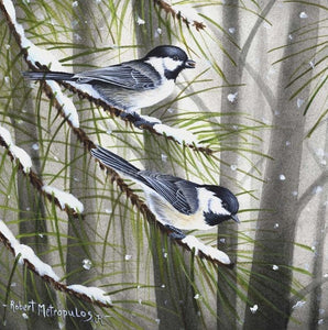 """Black-Capped Chickadees"""