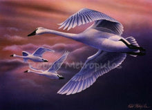 "Load image into Gallery viewer, ""2004 Ohio Waterfowl Stamp"""