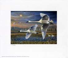 "Load image into Gallery viewer, ""2020 Ohio Ducks Unlimited Sponsor Print of the Year"""