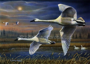"""2020 Ohio Ducks Unlimited Sponsor Print of the Year"""