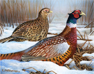 2021 Wisconsin Pheasant Stamp
