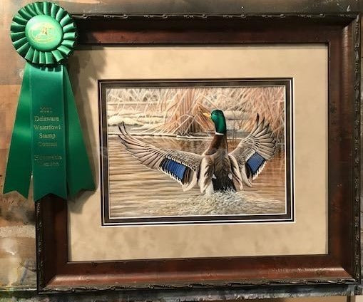 2020 Delaware Duck Stamp Entry