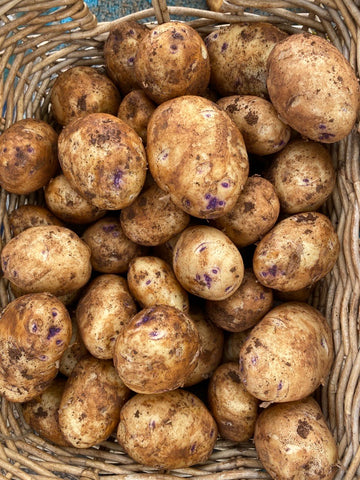 Tasmanian Bismark Potatoes