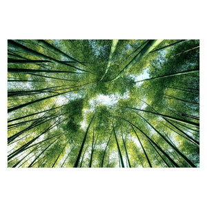 Tempered Glass Art - Green Vibrant Wall Art Decor