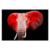 Tempered Glass Art - Red Elephant Wall art Decor