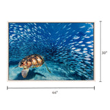 Canvas Art - Sea Turtle Wall Art Decor
