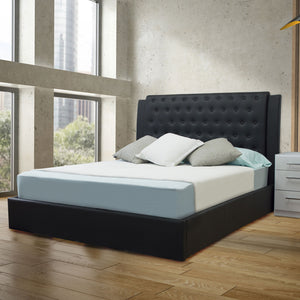 Black Queen Platform Furniture Bed