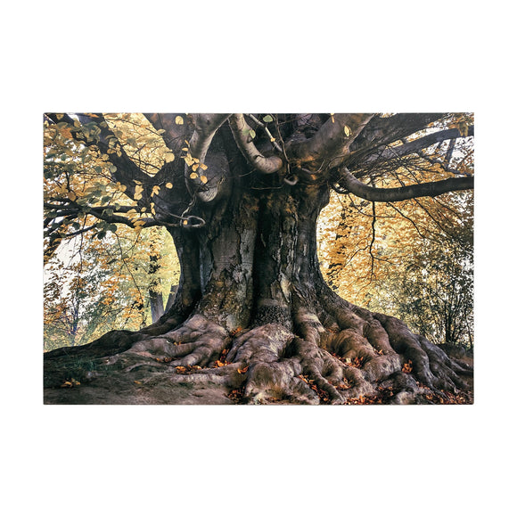 Canvas Art -Tree Wall Art Decor