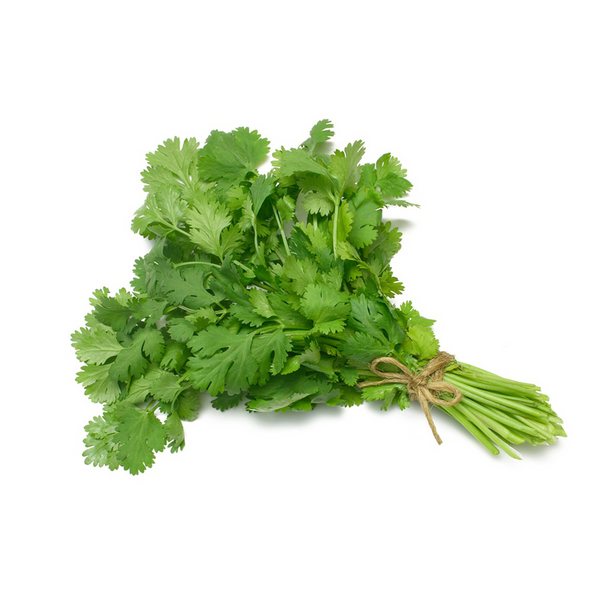 Cilantro (bunch) Product