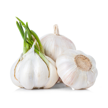 Garlic-per lb Product
