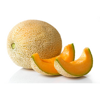 Melon Product