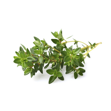 Thyme (bunch) Product