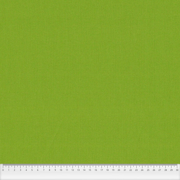 Spectrum Plains Fabric Range - Makower - Pistachio