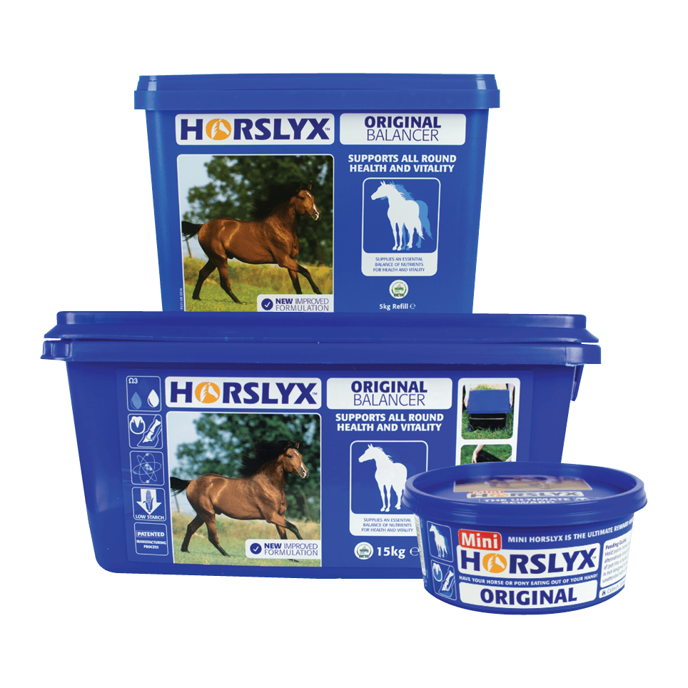 Horslyx Original Balancer