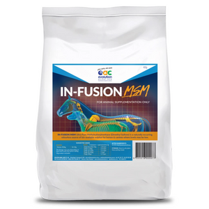 In-Fusion MSM (Methylsulfonylmethane) Joint Supplement, Anti-oxidant & Muscle Repair For Horses & Dogs