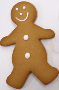 24 x Christen's Gingerbread Students