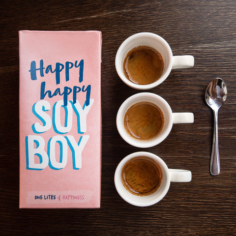 Happy Happy Soy Boy Soy Milk 6 x 1L
