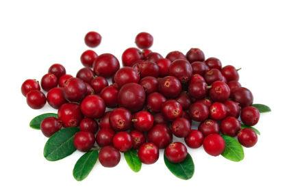 Yarra Valley Jams - Cranberry Sauce 2.25kg