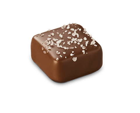 48 x Chocolatier - Dark Salted Caramel