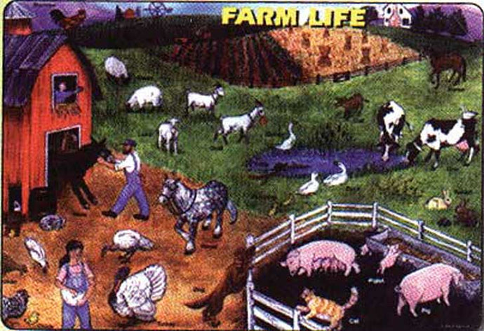 Farm Animal Placemat