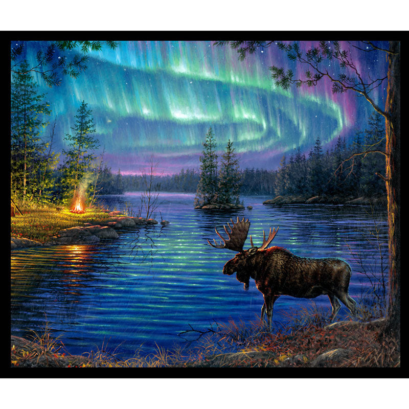 Animals - Northern Lights Moose Multi Panel