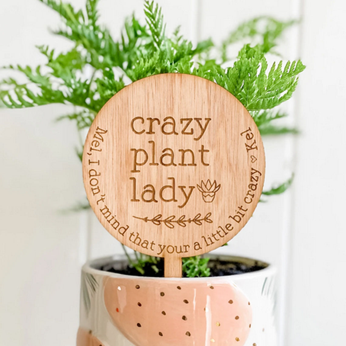 Crazy Plant Lady, Personalised Planter Sign (Personalised Plant Lover Gift)