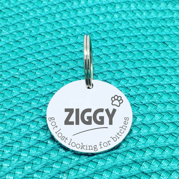 Personalised Pet Tag, 'Ziggy' Got Lost Looking For Bitches Design (Personalised Custom Engraved Dog Tag)