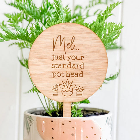 Just Your Standard Pot Head, Personalised Planter Sign, Succulent Design (Personalised Plant Lover Gift)