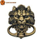 Heurtoir de Porte Tete de Lion Antique