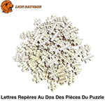 Pieces du Puzzle Lion Multicolore 1000