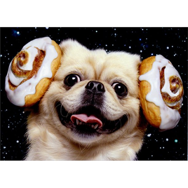 Avanti - Cinnamon Bun Star Wars Dog Birthday Card