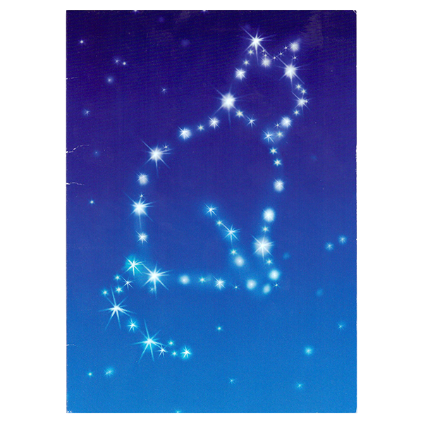 Avanti - Cat Constellation Pet Sympathy Card