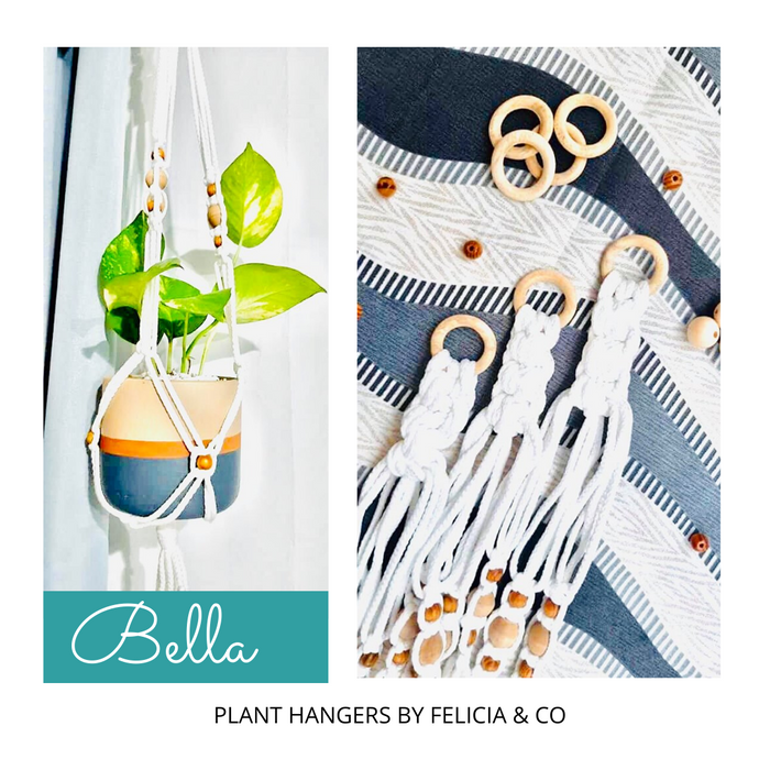 BUY 1 TAKE ONE FREE PLANT HANGERS for Natural Air Purifier Indoor by Felicia & Co
